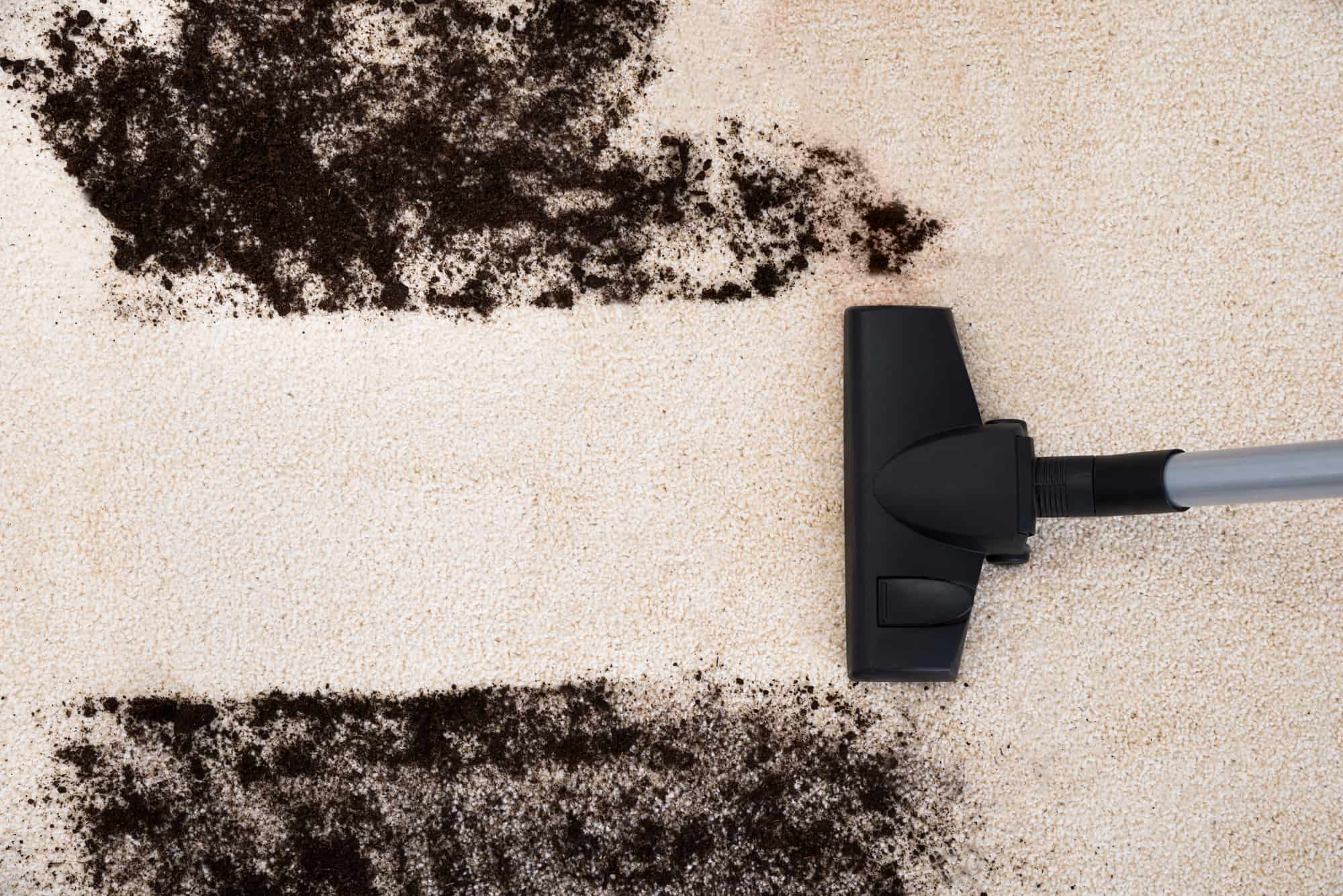 carpet cleaner in clitheroe